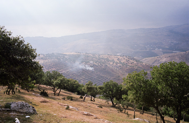 Oak Forest / Smoke in the Distance, Amman, Zabda 2013