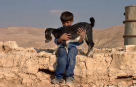 Makawir, Jordan 2005