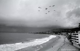 Laguna Beach, California 2009