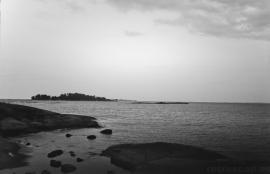 Gåsgrund 2011