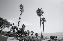 Pismo Beach, CA 2009