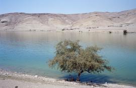 Alshounah Alwostah, سد وادي شعيب  Jordan 2013