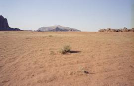 Wadi Rum, Jordan 2013