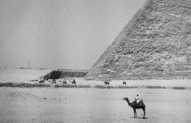 Giza 2013
