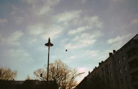 Neukölln #3, Berlin 2013