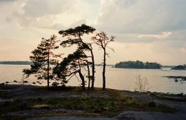 Gåsgrund, Espoo 2014