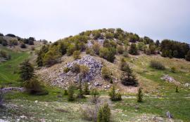Al Shouf Cedar Nature Reserve, Lebanon 2013