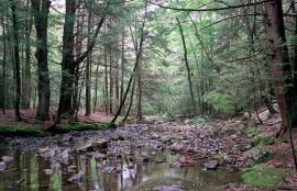 New Paltz Mohonk Preserve NY 2016