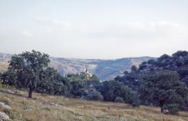 وادي الشتا Amman 2018